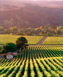 Alisal Guest Ranch and Resort - favorite wine country visit