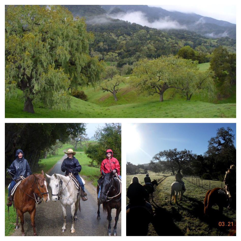 Alisal Guest Ranch and Resort - Alisal Experience