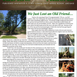 Riders of the Alisal – 2015 Summer Issue
