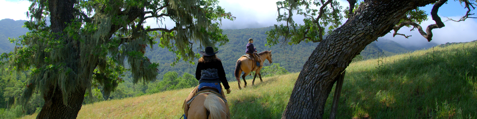 Horseback Riding at Alisal Dude Ranch
