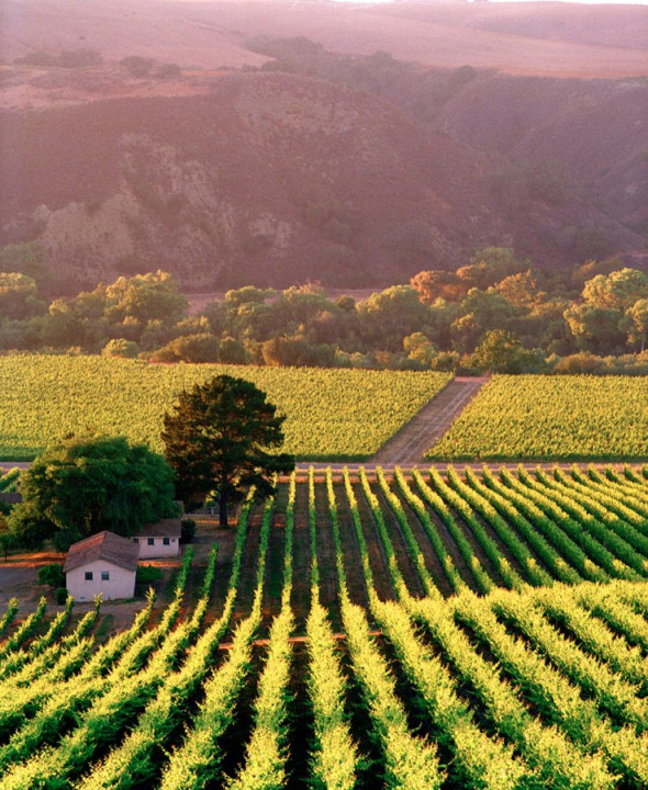 Favorite wine country visits part 1 alisal guest ranch for Best time to visit wine country