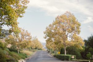 Alisal Guest Ranch and Resort - Renting the ranch