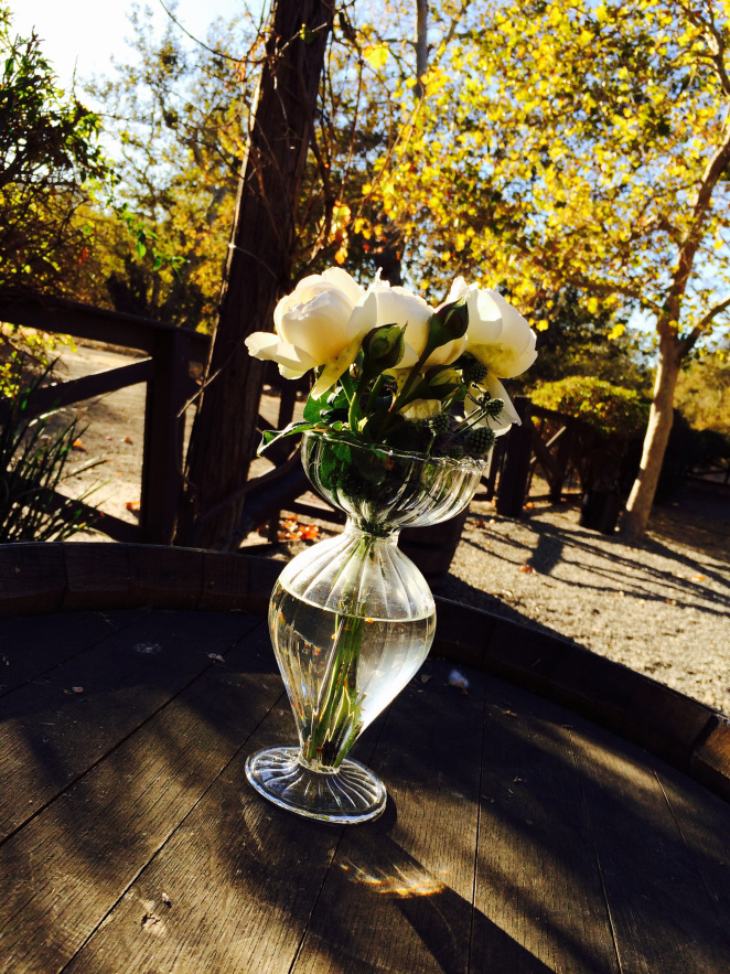 A Wedding At The Ranch Vs Alisal River Terrace Alisal Guest Ranch