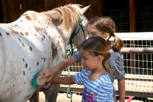 Two girls brushing a horse at the Alisal Guest Ranch & Resort