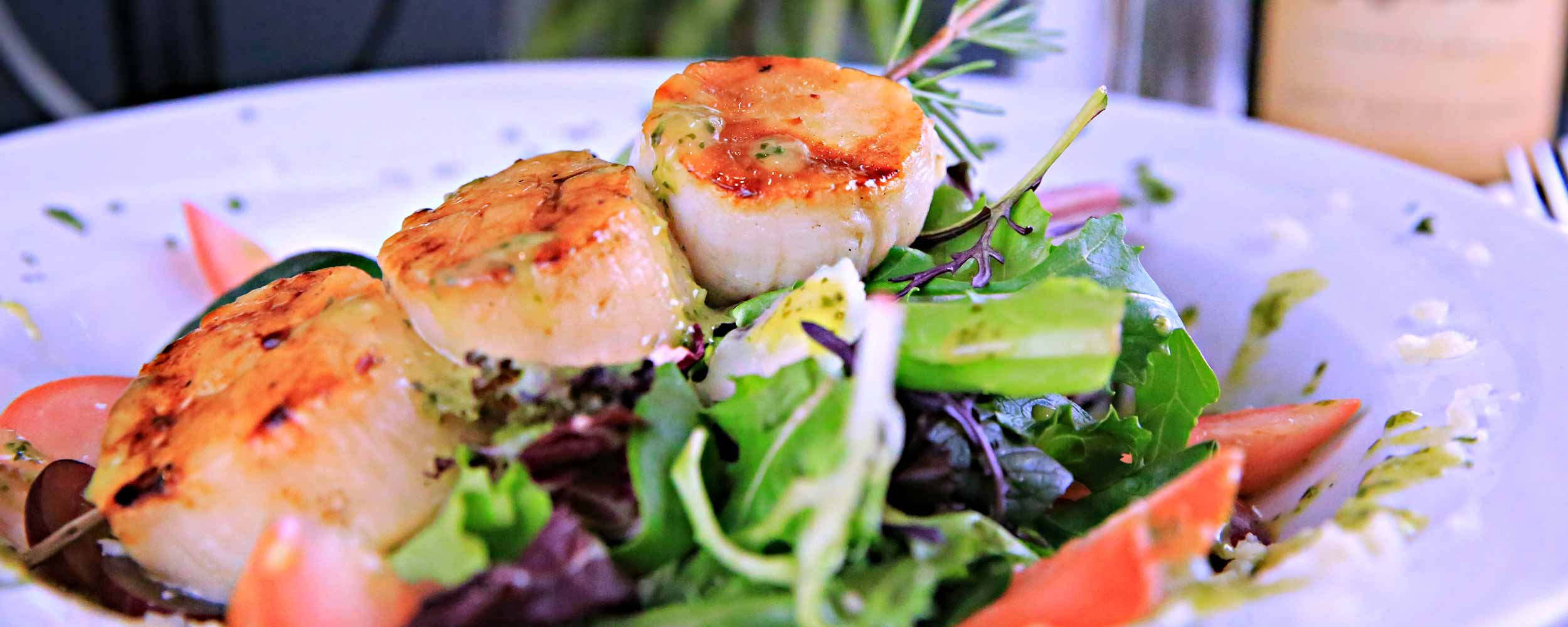 Scallops at Alisal - Alisal Resort in Solvang California