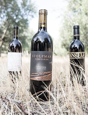 Stolpman Vineyards in Santa Barbara County
