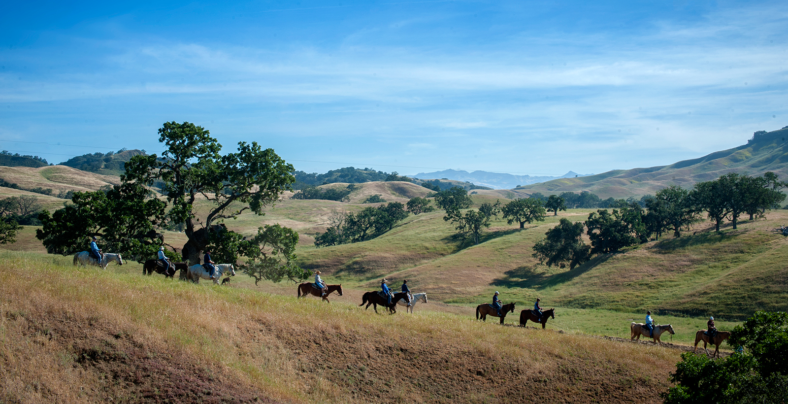 Horseback riding at The Alisal