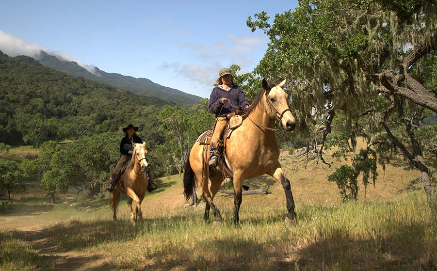 Advanced horseback riders on the trail at Alisal Guest Ranch