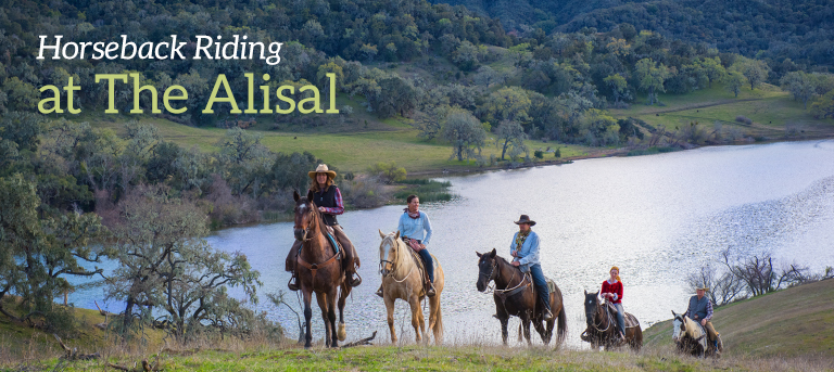 Summer - Horseback Riding Classes and Tours