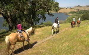 Specialty Morning Horseback Ride by Alisal Lake at Alisal Guest Ranch in Solvang, CA