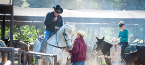 BBQ Bootcamp - Horseback Riding