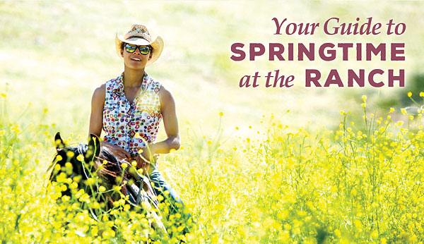 Springtime Activities at Alisal Guest Ranch & Resort