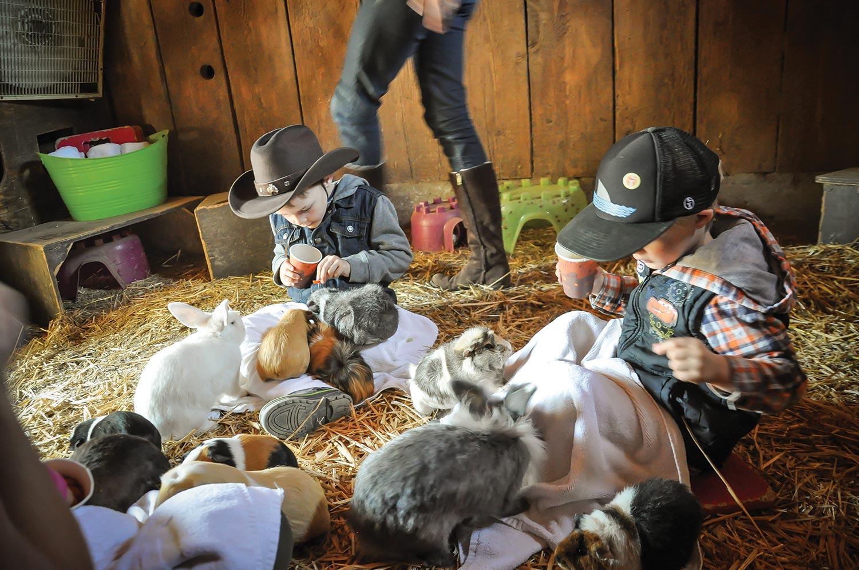 At The Barn