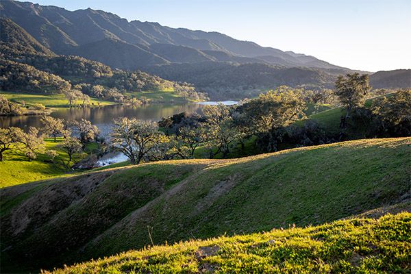 Rolling green hills surrounding the lake at Alisal Guest Ranch & Resort