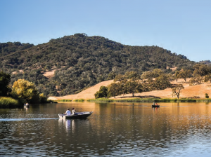 A bass boat with fishermen trolling along Alisal Lake on a sunny day