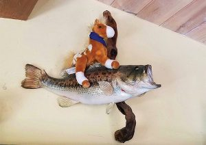 Plush, stuffed horse riding on the back of a trophy bass mounted to the wall at Alisal Guest Ranch